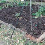 Ogród jesienią Rybniki