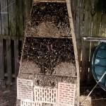 dom dla owadów rybniki ogród permakultura