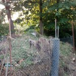 pryzma kompostowa ogrzewanie kompostem grzanie wody użytkowej