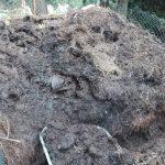 pryzma kompostowo grzewcza przerobiony kompost 08 2017
